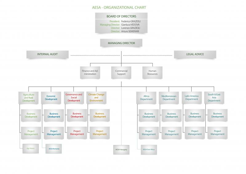 Organizational Chart Agriconsulting Europe